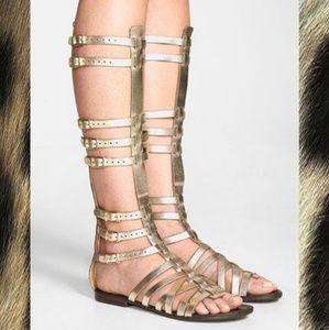 912a41f3f643 NWOB Steve Madden Golden Spartan Buckle Shoes - 9